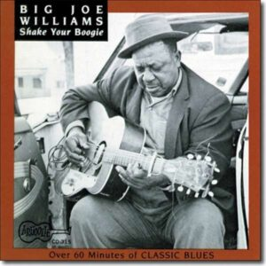Shake Your Boogie - Big Joe Williams