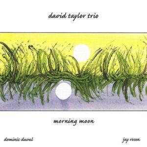 David Taylor Trio - Morning Moon