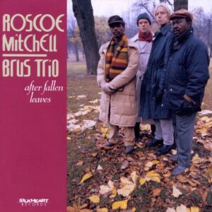 Roscoe Mitchell Brus Trio - After Fallen Leaves