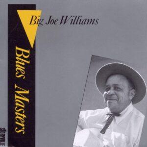 Big Joe Williams - Blues Masters Vol.2